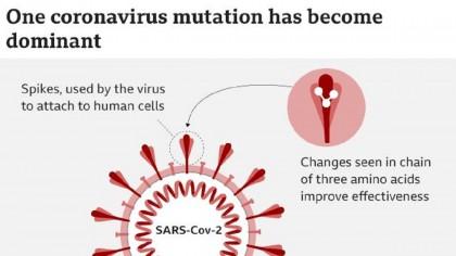 Studiu. Noua tulpină de coronavirus, cu 30% mai mortală