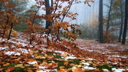 ANM: cum va fi vremea în luna noiembrie! NU e normal aşa ceva în România